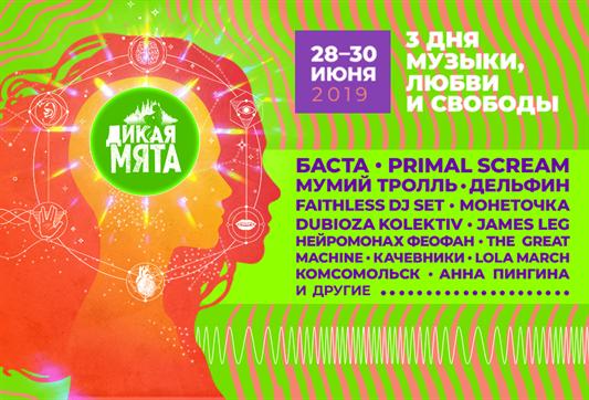 Дикая мята - 2019