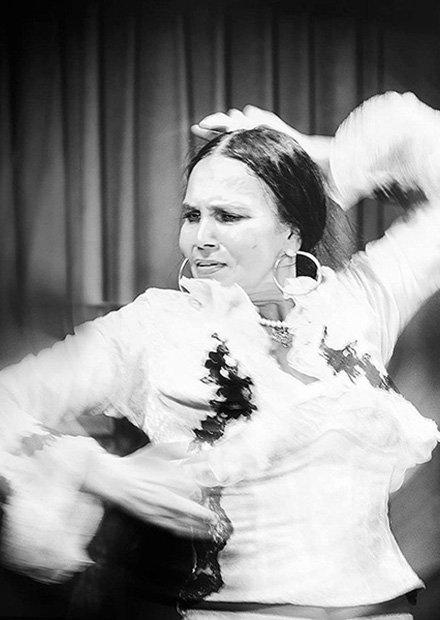 Fabula Flamenca (Сказания Фламенко)