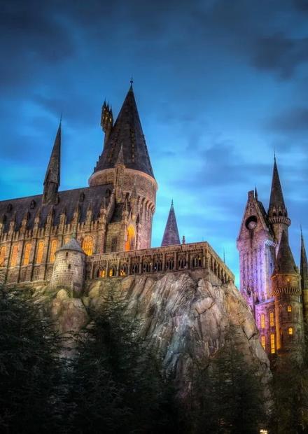 Органный мир фэнтези: Хогвартс и Хроники Нарнии