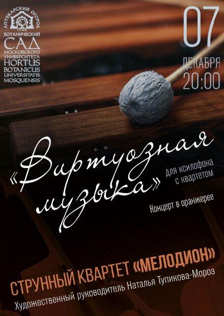 """""""Виртуозная музыка"""" для ксилофона с квартетом"""