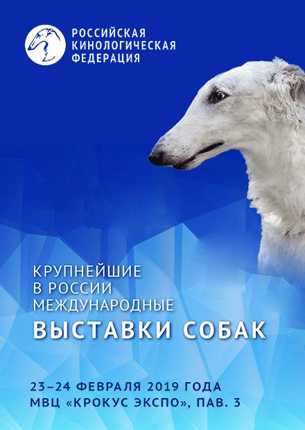 Выставка собак «Евразия 2019»