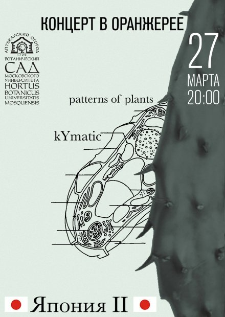 Япония II. Patterns of Plants. kYmatic