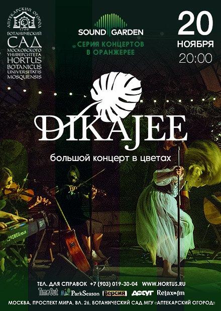 Dikajee & orchestra в цветах