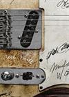 Guitar Day. Fender Telecaster