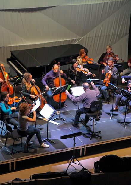 Оркестр Musica Viva