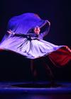 "Шоу ""Ballet Flamenco Espanol"" (Испания)"